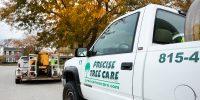 Precise-Tree-Care-1