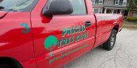 Precise-Tree-Care-51